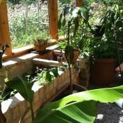 Gewächshaus & Bepflanzung